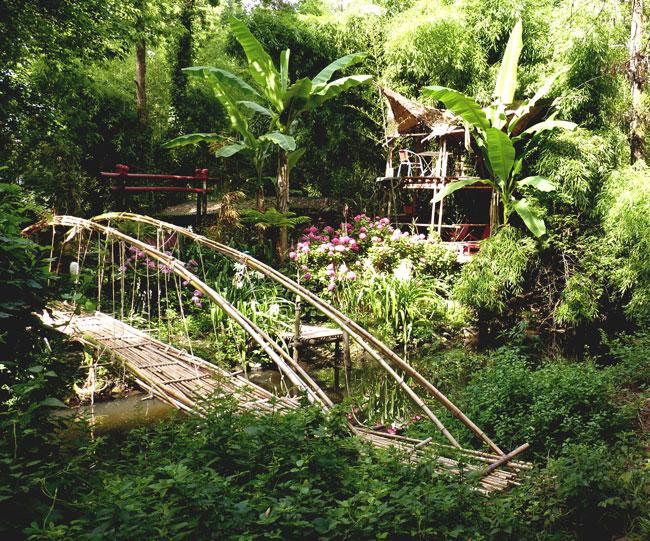 pont-fleurs-gradignan-cayac
