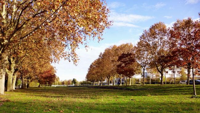 marche-rapide-bordeaux-parc