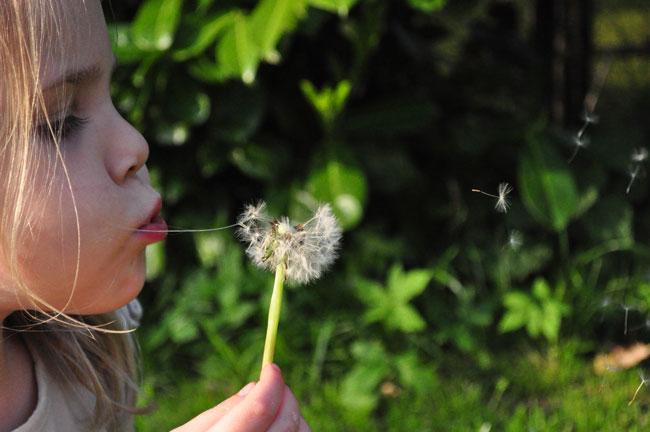 service-groupe-enfants-fleur