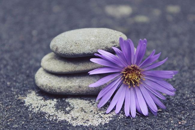 sophrologie-zen-équilibre-nature