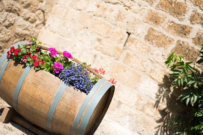 atelier-photo-rions-fleurs