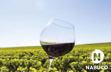 nabuco-vigne-particulier-viticulteur